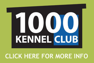 1000 Kennel Club